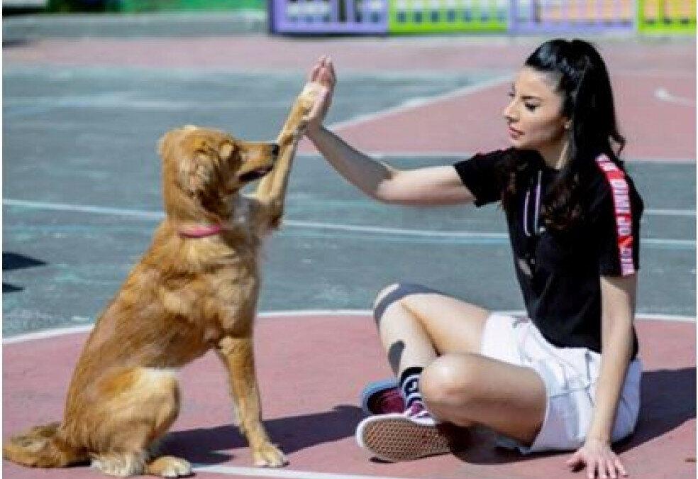 Η συνέντευξη της Βασιλικής Σταθοπούλου στο skai.gr για την Παγκόσμια Ημέρα Αδέσποτων Ζώων